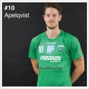 10_Apelqvist