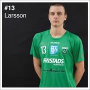 13_Larsson