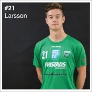 21_Larsson