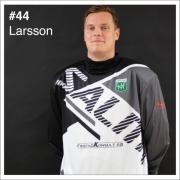 44_Larsson