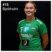 15_bjelkholm