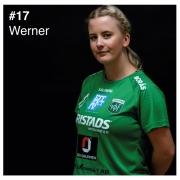 17_werner