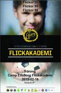 2015-02-16 flickakademin